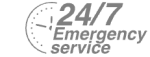24/7 Emergency Service Pest Control in Crouch End, N8. Call Now! 020 8166 9746